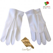 Flying Leather Gloves (HSMFA)