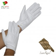 Men Leather Gloves (HSMM)